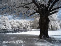 Infrarotfotografie – Grundlagen